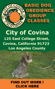 Anthony Giammarco and The City of Covina Basic dog group classes